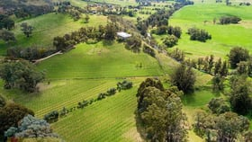 Rural / Farming commercial property for sale at 1179 Castlereagh Highway Mudgee NSW 2850