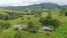 Rural / Farming commercial property for sale at 173 Collins Valley Road Kyogle NSW 2474