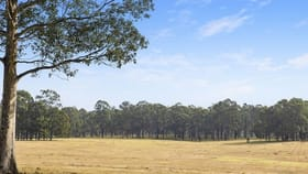 Rural / Farming commercial property for sale at 42 Big Ridge Lane Sedgefield NSW 2330