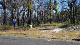Rural / Farming commercial property for sale at 171 Deepwater Road Deepwater QLD 4674