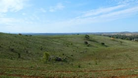 Rural / Farming commercial property for sale at L90 GOSPEL HALL ROAD Dallarnil QLD 4621