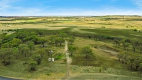 Rural / Farming commercial property for sale at LOT 3116 Scrubby Road Pittsworth QLD 4356