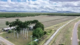 Rural / Farming commercial property for sale at 10 Sellars Road Dalbeg QLD 4807