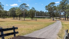 Rural / Farming commercial property for sale at Abermain NSW 2326
