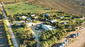 Rural / Farming commercial property for sale at 1679 Wanappe Road Bowillia SA 5461