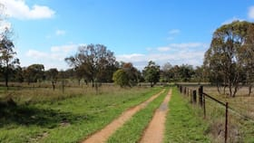 Rural / Farming commercial property for sale at 10 Smelter Rd Rosenthal Heights QLD 4370