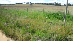 Rural / Farming commercial property for sale at 2229 Ropers Road Binnaway NSW 2395