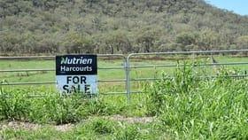 Rural / Farming commercial property for sale at 1/650 Goomburra Road Berat QLD 4362