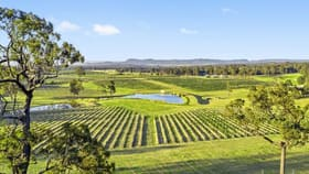 Rural / Farming commercial property for sale at 257 Sweetwater Road Pokolbin NSW 2320