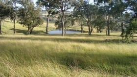 Rural / Farming commercial property for sale at 'Kingsgate/1319 Tablelands Road Red Range NSW 2370