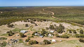Rural / Farming commercial property for sale at 2704 Ogilvie West Road Yallabatharra WA 6535