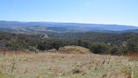 Rural / Farming commercial property for sale at Lot 9 'Sundown', off Hunter Road, Tomalla via Moonan Flat NSW 2337