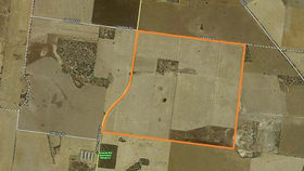 Rural / Farming commercial property for sale at 1940 Nhill-Netherby Road Nhill VIC 3418