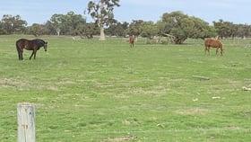Rural / Farming commercial property for sale at Tea Tree Flats, 300 Patterson Rd Pinjarra WA 6208
