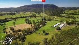 Rural / Farming commercial property for sale at 699 Mill Creek Road Stroud NSW 2425