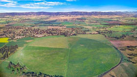 Rural / Farming commercial property for sale at 'St Aubins Without' 2335 New England Hwy Scone NSW 2337