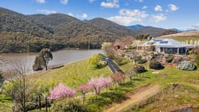 Rural / Farming commercial property for sale at 372 Caves  Road Wee Jasper NSW 2582