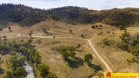 Rural / Farming commercial property for sale at 3496 Yarrabin Road Twelve Mile NSW 2850