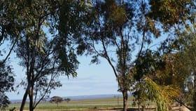Rural / Farming commercial property for sale at 3438 Dowerin-Koorda Road Booralaming WA 6475