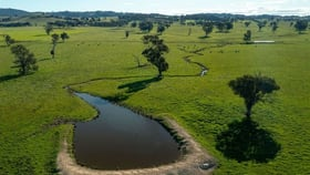 Rural / Farming commercial property for sale at Swans Gregadoo East Rd Wagga Wagga NSW 2650