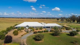Rural / Farming commercial property for sale at 692 Spring Creek Road Mudgee NSW 2850