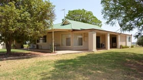 Rural / Farming commercial property for sale at 9335 Calder Highway Irymple VIC 3498