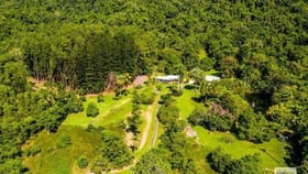 Rural / Farming commercial property for sale at 296 Finlayvale Road Mossman QLD 4873