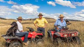 Rural / Farming commercial property for sale at 1077 Cumbamurra Road Berremangra NSW 2582