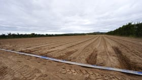 Rural / Farming commercial property for sale at 1061 Leadingham Creek Road Dimbulah QLD 4872