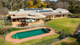 Rural / Farming commercial property for sale at 1513 Centre Road Moama NSW 2731