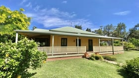 Rural / Farming commercial property sold at 179 Mittons Lane 'Lorna Doone' Pinnacle NSW 2810