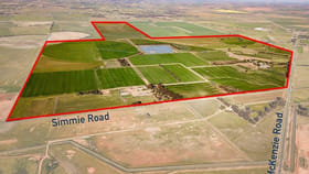 Rural / Farming commercial property for sale at 1151 McKenzie Road Echuca VIC 3564