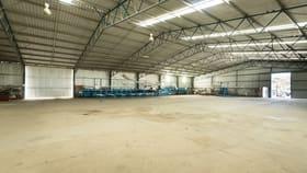 Rural / Farming commercial property for sale at 307 Cobram Koonoomoo Road Cobram VIC 3644