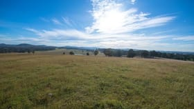 Rural / Farming commercial property for sale at Lot 22 Wyndella Road Lochinvar NSW 2321