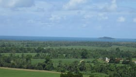 Rural / Farming commercial property for sale at 0 Cowley Beach Road Lower Cowley QLD 4871