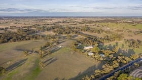 Rural / Farming commercial property for sale at 2355 Woolumbool Road Lucindale SA 5272