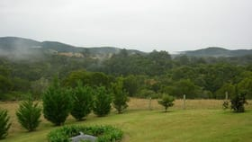 Rural / Farming commercial property for sale at Wootton NSW 2423