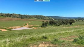 Rural / Farming commercial property for sale at 3674 Cobbadah Road Inverell NSW 2360