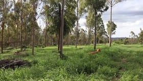 Rural / Farming commercial property sold at Lot 2 Coolabunia-Malar Road Hodgleigh QLD 4610