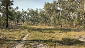 Rural / Farming commercial property for sale at 0 Mount Eagle Road Eidsvold QLD 4627