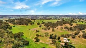 Rural / Farming commercial property for sale at Lot 51 - 25 North Street Angaston SA 5353