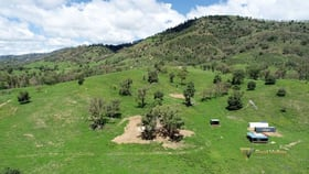 Rural / Farming commercial property for sale at 4127 Halls Creek Road Halls Creek NSW 2346