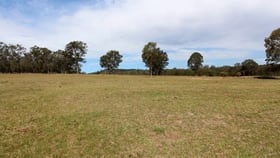 Rural / Farming commercial property for sale at 1384 Wine Country Drive Rothbury NSW 2320