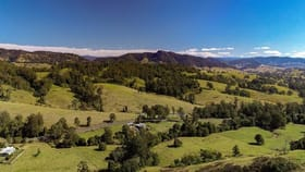 Rural / Farming commercial property for sale at 917 The Bucketts Way Gloucester NSW 2422