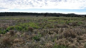 Rural / Farming commercial property for sale at Lot 15 Leyburn Valley Gunnedah NSW 2380