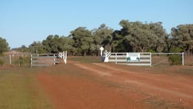 Rural / Farming commercial property sold at . Myroolia - Part Romani Bourke NSW 2840