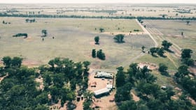 Rural / Farming commercial property for sale at 759 Wamboyne Road West Wyalong NSW 2671
