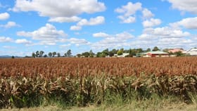 Rural / Farming commercial property for sale at Lot 23 Wiedman Road Clifton QLD 4361