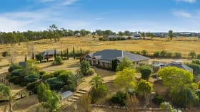 Rural / Farming commercial property for sale at 170 Toowoomba Road Pittsworth QLD 4356