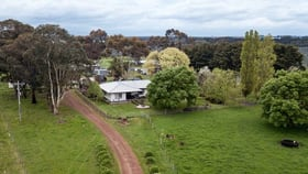 Rural / Farming commercial property for sale at 393 Chrome Road Branxholme VIC 3302